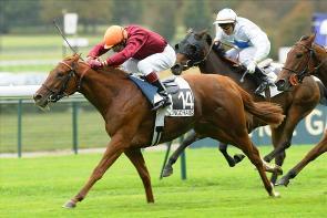 jockey-small