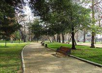 parque-no-morumbi