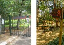 parque-dos-eucaliptos-no-morumbi